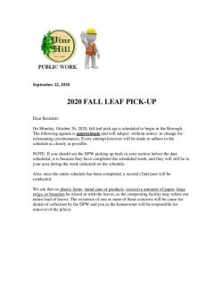 thumbnail of Fall Leaf pick-up 2020